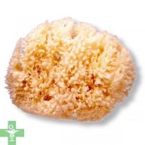 Suavinex esponja natural grande 0 m+